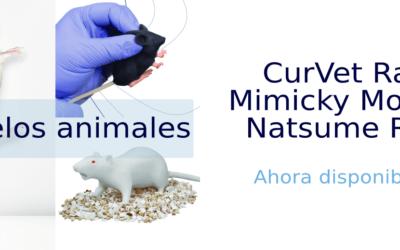 Modelos para ratón y rata